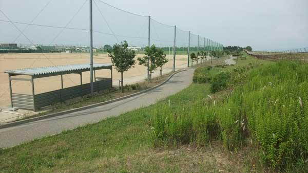 園路(ソフトボール場付近)